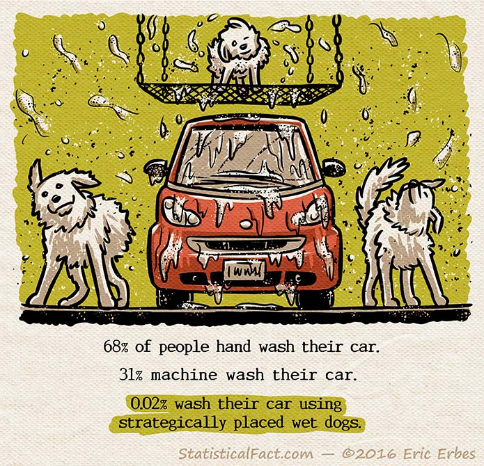 Two wet dogs on either side of a smart car and one puppy covered in suds standing on a platform above the car. All tree dogs are shaking and covering the car in soap and water.