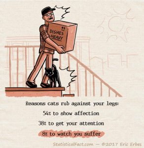 a black cat rubs against the legs of a man carrying a heavy box at the top of a staircase