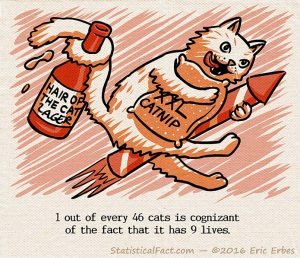 a cat with a crazed expression on its face rides a firecracker rocket while holding and large bag of catnip and a Hair of the Cat Lager bottle